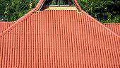 pic of red roof tile  - Red tile roof with green tropical foliage in background - JPG