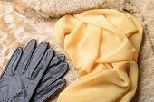 Sheepskin Fur, Gloves And Scarf