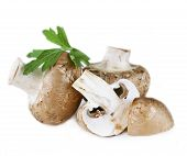 fresh organic mushrooms champignon with parsley leaves