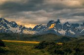 picture of pain-tree  - Breathtaking view of sunset over snowy mountains in Torres del Paine National Park - JPG