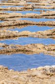 picture of gozo  - Salt evaporation ponds also called salterns or salt pans located near Qbajjar on the maltese Island of Gozo.