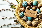 picture of bird egg  - Bird eggs in nest on color wooden background - JPG