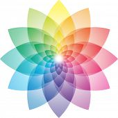 stock photo of color wheel  - Beautiful Lotus Flower Color Wheel - JPG