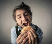 pic of hamburger  - Hamburgers lover  - JPG