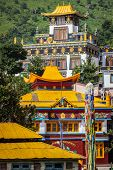 stock photo of himachal pradesh  - Buddhist temples in Rewalsar - JPG