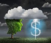 picture of financial management  - Money making idea as a wealth and entrepreneur concept with a tree head in the clouds with a lightning bolt shaped as a dollar sign as a financial symbol for debt management and profit solution - JPG