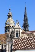 detail of Cathedral of Saint Elizabeth, Kosice, Slovakia