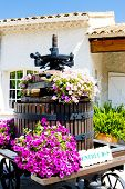 winepress, Bandol, Provence, France