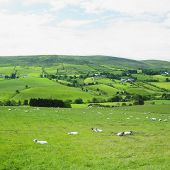 Sperrin Mountains, County Tyrone, Northern Ireland