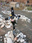 Anden Friedhof, cachi