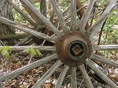 picture of olden days  - picture of an old rustic weathered wagon wheel outdoors - JPG