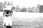 Birdhouse And Field