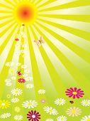 Hot Summer Garden poster