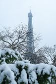 Eiffel Tower Under The Snow Behind Trees From The Trocadero Gardens In Winter In Paris, France poster