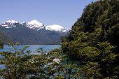 Lago Cisne (Swan Lake), Argentina