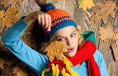 Hipster Woman Knitted Hat And Scarf Hold Autumn Leaves. Fall Cozy Atmosphere. Knitted Accessories. G poster