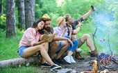 Tourists Sit Log Near Bonfire Taking Photo On Smartphone. Friends On Vacation Capture Moment. Friend poster