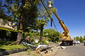 Utility truck lifts a severed power pole and lines after an accident