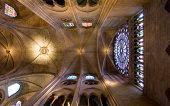 Notre Dame Ceiling