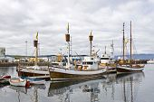 Boats, used to take tourists on whale watching trips wait for new passengers in Husavik, Iceland