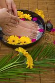 stock photo of daisy flower  - Spa treatment with aromatic gerbera daisies healing stones olive oil soaps and herbal water - JPG