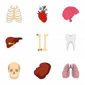 Human Organs Anatomy Icons Set. Flat Illustration Of 9 Human Organs Anatomy Icons For Web poster