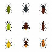 Zoology Icons Set. Flat Illustration Of 9 Zoology Icons For Web poster
