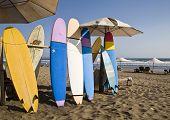 Surfers beach