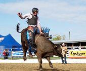 cowboy riding a bucking bull