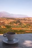 An empty coffee cup on a table at the archaeological site of Phaestos, overlooking the Mesara Plain,