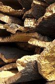 Cork Crust
