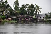 stock photo of alleppey  - Islands of Alleppey - JPG