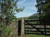 Gate At Pendle