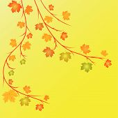 Autumn Vector Illustration