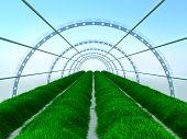 long greenhouse