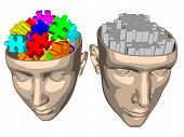 Puzzle brain of woman and man