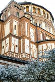 Santa Maria Delle Grazie (milan), Cloister