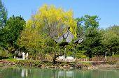 Montreal's botanical garden