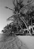 Black And White Beach In Tropical Destination poster