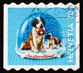 Postage Stamp Switzerland 2000 St. Bernard Dog, Souvenir