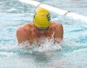 pic of breast-stroke  - breast stroke swim - JPG