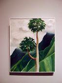 World Famous Artist, Georgia O'keeffe, Papaw Tree, 'iao Valley, Maui, 1939