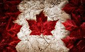 Real Leaf Canada Flag on Particle Board
