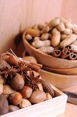 pic of brazil nut  - nuts in shells - JPG