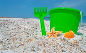 Green Bucket And Shell