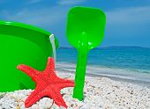 Red Sea Star And Green Bucket