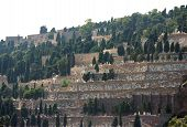 Barcelona, Spain - July 24, 2013: View Of Montjuic Cemetery From Cargo Port On July 24, 2013 In Barc