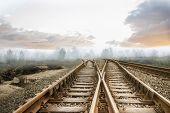 Railway tracks leading to misty forest