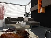 Modern lounge with contemporary armchairs, a comfortable sofa, animal skin on the floor and wall-mounted cabinets