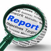 Report Magnifier Definition Shows Progress Statistics And Financ